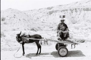 The black and white photo shows from the side a donkey with a two-wheeled trailer, on which a man sits facing the camera. He carries on his head small square packages, which are fastened with cords. He looks skeptical, the donkey's head is turned backwards towards him. The nature in the background is a hilly stone desert.